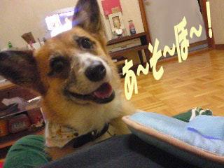 あそぼ!!~01.jpg