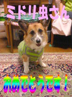おめでとう〜!!~03.jpg