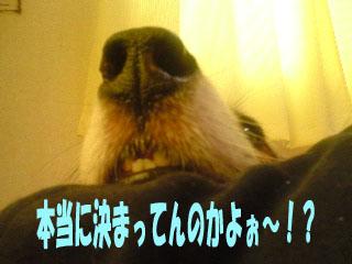 ずず〜い~01.jpg