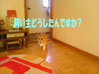 どうしたの?~04.jpg