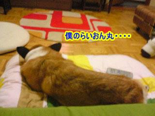 ふへぇぇl~01.jpg