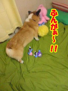 んがぁぁ~03.jpg