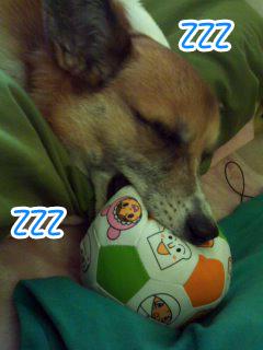 アンパン睡眠~01.jpg