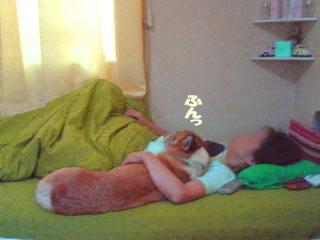 オラ寝るの~01.jpg