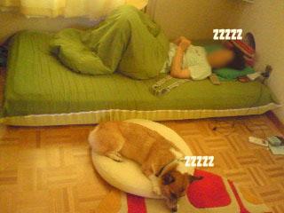 人の部屋で寝る人々~01.jpg