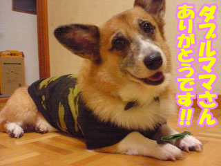 本当にありがとうございます!!~02.jpg