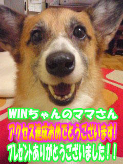 WINちゃんのママさん♪.jpg