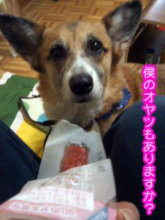 100円ローソンサラミ.jpg