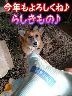 2009年もらしきもの~0002.jpg