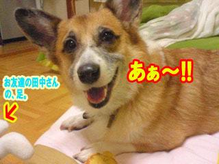 あ〜分かった!!~01.jpg