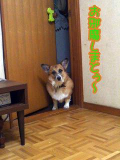 お邪魔しまとぅぅ〜~02.jpg
