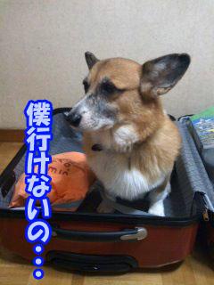 けっ~03.jpg