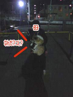 こぎこーぎブランコ~01.jpg