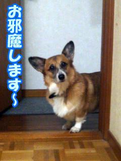 こんばんみぃ〜!!!!!!!!~02.jpg