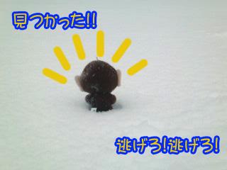 さるっち!!~02.jpg