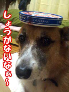しょうがないなぁ〜~04.jpg