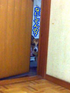 なにをしているの??~03.jpg