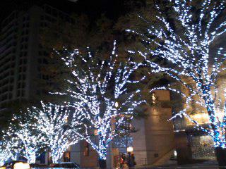 クリスマス2~01.jpg