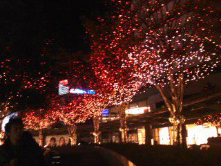クリスマス5~01.jpg