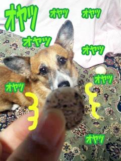ゴマのオヤツ美味しいオヤツ03.jpg