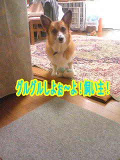 今朝の出来事1~01.jpg