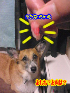消えたお肉~01.jpg