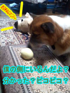 内緒話~01.jpg