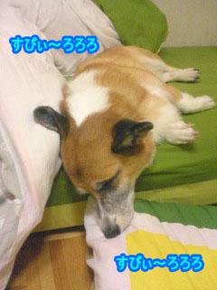 僕は眠いの01.jpg